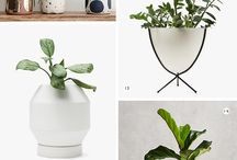 Home / All things home decor