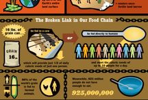 Homelessness/Poverty Infographics / by A-SPAN