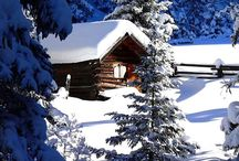 Cozy Cabins / by Patty Johnson