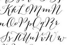 Fonts / by Dani Sloman