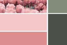 Home - Color Idea's