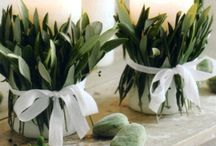 dekoracje , stół,  rośliny