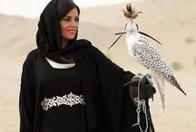 Falcons and birds of prey