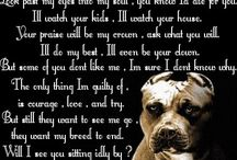 Pittbull Love / by amy Crum