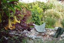 Garden design / As a garden designer, landscape contractor and maintenance gardener I examine all garden images critically.  I only pin what I find practical, sustainable and beautiful.   Following these guidelines our lives seamlessly connect with nature around us.