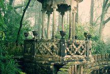 Ancient Environment