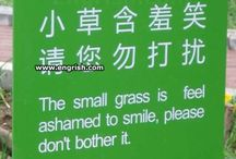 Engrish / by Weird