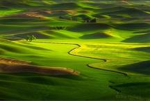 Landscape Photography / by Blonde BrainTrust