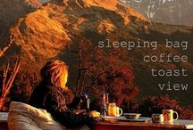 Camping / by Lena Hammond