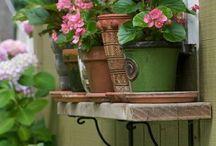 Garden Idea / by Charlett Lyn