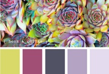 Color Palettes / Color groupings for future decorating. / by Brenda Newhouse Preston