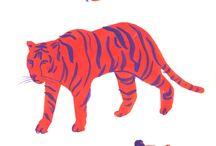Tigri.