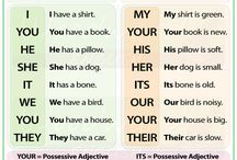 Possessive adjectives