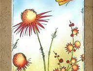 Jofy cards