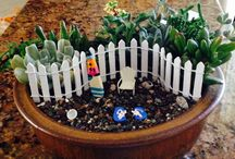 Mini Fantasy Gardens / I have planted succulents into small containers and decorated with fairies. They make a great gift and can go from home to office. I have them for sale locally in Gallery at Marina Square located at 601 Embarcadero, Morro Bay, Ca