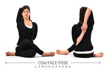Workout Trends / Yoga poses, health, fitness and parenting
