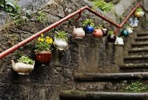 garden design ☆
