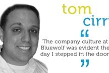Why Bluewolf?