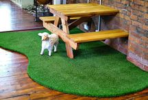 Fake Grass / Things to know about Fake Grass, also known as Artificial grass. www.fake-grass.net