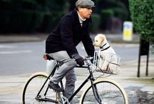 Pashley owners