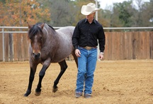 Passion, Beauty and Grace / by Brandi Pierson-Miller