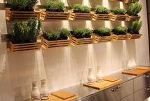 Огород на кухне балконе
