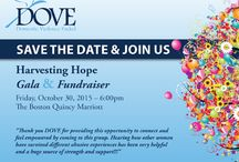 Harvesting Hope 2015 / Dedicated to DOVE's gala fundraiser on Friday October 30th at 6:00pm. Boston Marriot Quincy. Quincy MA