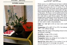 medicinal gardening / by germaine konate