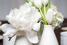Wed.Botanics / by Dawn L. Kenrick H.