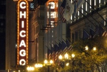 Chi-town / I live in THE BEST city in the world, CHICAGO!!! I love my city and so proud to be a Bears, Bulls, and Cubbies fan!! We are home of the best food ever! / by Rahela Nick