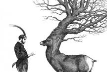 fauna / by Diane Reid