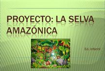 Proyecto: SELVA