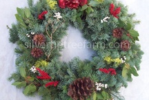 Silver Tip Tree Farm Wreaths ideas / Wreaths and pinecones and everything Christmas