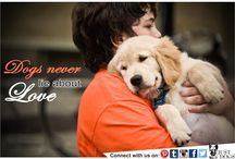 Dog Quotes and Sayings / Cute Quaotations and sayings about Dogs