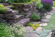 STEPS AND STONES / I love to be in a garden that has solid structure in it.  I seem to collect rocks for my garden wherever I go, which can make my husband go crazy sometimes! / by Carolyn Fisk