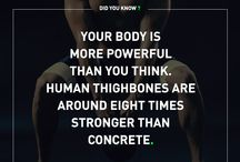 Did you know? / Human body facts