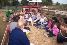 Educational Tours at Milburns! / Educational Tours offered in the Spring, Summer & Fall.  Fall tours include Hayrides, BarnYard Buddies visit, a quick lesson about Johnny Appleseed, a visit to our Packing house, and more!
