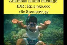 Paket Wisata Pulau Anambas, Contact : Contact 081210999347