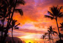 Favorite Places / by Rhonda Marrs Jones
