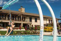 AquaClimb Zip N / Aquatic Zip lines Poolside zip lines Poolside rope swings