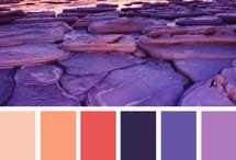 palets ☺