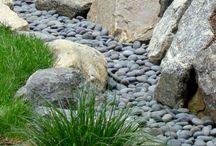 coastal gardens australia