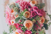 Inspiration Rose&Orange