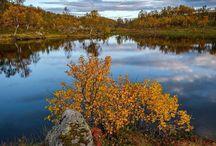 Harstad, Norway - Autumn