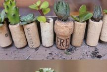 Recycling & ideas :)