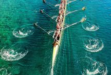 Rowing Photography / by Dad Vail