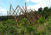 Groene revolutie 2007 / Natuurkunstroute in Schoonoord, Drenthe. www.natuurkunstdrenthe.nl