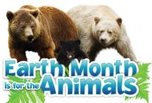Earth Month is for the Animals! / During the month of April, when you protect a threatened animal through a Bring Back the Wild campaign, a donation will be made to TNC Canada to support First Nations in their research of bear conservation in the Great Bear Rainforest.   But that's not all, if you raise $75 or more, you will also earn a bonus limited edition Earth Rangers spirit necklace!  Take action now! http://www.earthrangers.com/earth-month-2016