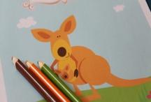 Animal curriculum