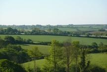 Cornish Countryside views at Meadow Lakes